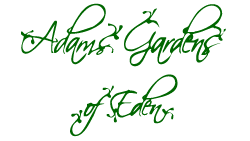 Adams Gardens of Eden Logo